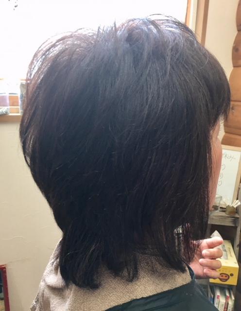 今年も癖毛を応援します