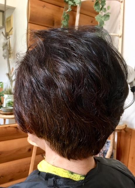 癖毛とヘナ