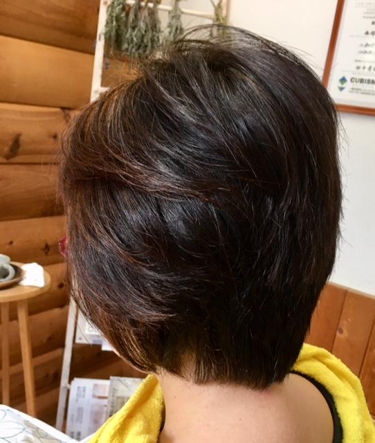 ヘナと髪の悩みを解消