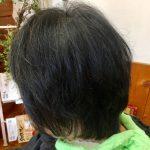 薄毛対応キュビズムカットとヘナで髪質改善