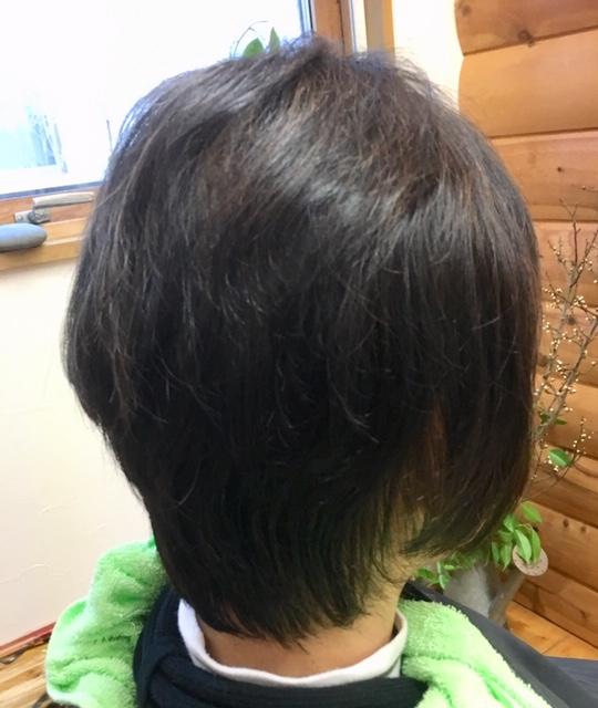 薄毛で悩んでる方もキュビズムカットとヘナで改善
