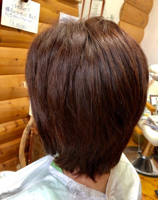 多毛、ハチ張りもキュビズムカットで解消